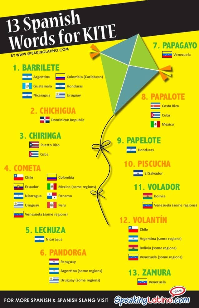 Infographic of the word Kite in spanish